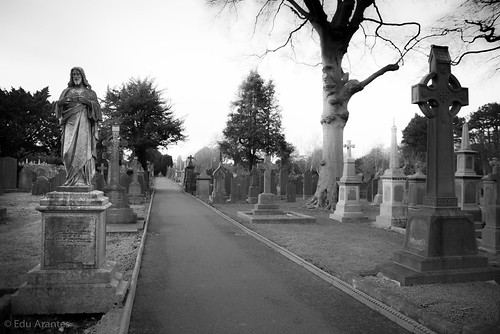 Thumbnail from Glasnevin Cemetery