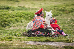The sassiest llama in the world (laskaproject) Tags: travel portrait woman mountains peru southamerica face animal rural costume clothing child bright native sassy cusco traditional llama meadow culture local peruvian disapproval