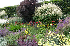 Herbaceous border, Lower Lovetts Farm (2) (karenblakeman) Tags: uk reading july berkshire knowlhill 2015 herbaceousborder organickitchengarden readingfoodgrowingnetwork rfgn lowerlovettsfarm