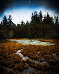 Frozen Clearing (Augmented Reality Images (Getty Contributor)) Tags: bracketexposure canon forest hdr ice landscape leefilters longexposure nature perthshire scotland trees verticalpanorama water winter
