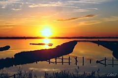 """___ un altro giorno sta per finire ___""""explore"""" (erman_53fotoclik) Tags: sunset tramonto panasonik dmc fx10 erman53fotoclik sole cielo acqua profili steccato atmosfera valli rosolina deltadelpo controluce orizzonte riflesso luce calda riva"""