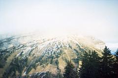 film (La fille renne) Tags: lafillerenne film analog 35mm expiredfilm expired lomography lomolca fujifilm fujichromeprovia400x xpro crossprocessing nature landscape mountain hike hiking