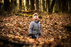 Geelders Shoot 04 (Mark van Oirschot) Tags: geelders boxtel fall sunset trees leaves child kid boy boys brothers family foliage yellow dream dramatic playing walking forest shoot netherlands fujixt10 fujifilm fuji56mm mud