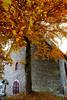 Autumn Monschau (廖法蘭克) Tags: monschau autumn germany canon 6d leica vacation relax frank photographer oldlens manuallens river mountain valley town oldtown leicaelmaritr24mmf28 friends 德國 萊卡 秋天 蒙紹 老鏡 手動對焦 手動鏡
