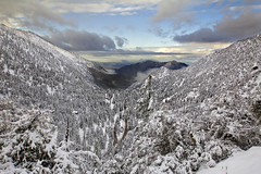 Winter wonderland (Explore 1-14-17) (BDFri2012) Tags: mtbaldy snow trees clouds cloudy bluesky winter dawn sunrise angelesnationalforest nationalforest southwestunitedstates southerncalifornia americansouthwest view vista viewpoint