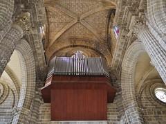 04.102016 - Jerez de la Frontera, la cathédrale (89) (maryvalem) Tags: espagne jerezdelafrontera jerez alem lemétayer lemétayeralain cathédrale orgues