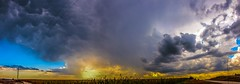 091516 - September Nebraska Thunder... (Pano) (NebraskaSC Photography) Tags: nebraskasc dalekaminski stormscape cloudscape landscape severeweather severewx nebraska nebraskathunderstorms nebraskastormchase weather nature awesomenature storm thunderstorm clouds cloudsday cloudsofstorms cloudwatching stormcloud daysky badweather weatherphotography photography photographic warning watch weatherspotter chase chasers newx wx weatherphotos weatherphoto sky magicsky extreme darksky darkskies darkclouds stormyday stormchasing stormchasers stormchase skywarn skytheme skychasers stormpics day orage tormenta light vivid watching dramatic outdoor cloud colour amazing beautiful sunset stormviewlive svl svlwx svlmedia svlmediawx