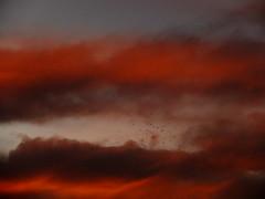 (Antonio Pérez .) Tags: sunset sunrise sky clouds twilight sundown nightfall closeofday dusk evening eventide gloaming cielo nubes puestadesol atardecer anochecer