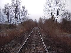 DSCN5420 (TajemniczaIstota761) Tags: industrial railway embankment przemysł zmpw nasyp bocznica siding viaduct wiadukt bridge