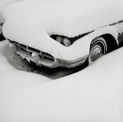 Thunderbird, Portland (austin granger) Tags: thunderbird tbird portland snow buried grill bumper winter headlights ford minimal form chrome hidden white square film gf670