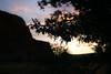 Dawn at Bell Rock - Juniper branches and berries (nikname) Tags: trees bellrock sedona arizona sunrise redrocks arizonausa arizonaredrocks bellrocksedonaarizona daw