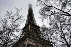 Et voilà... la Tour Eiffel ! (miriam ulivi) Tags: miriamulivi nikond7200 francia france parigi paris toureiffel alberi rami trees branches nebbia fog inverno winter