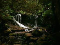 Waterfall @ Tasmania, Australia (timparkinson) Tags: waterfall australia tasmania preflickr