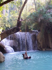 Three on a Rope (WPM) Tags: blue trees playing tree green fall water pool tag3 taggedout children fun waterfall jumping waiting asia tag2 tag1 south vine rope swing east swinging laos luang prabang