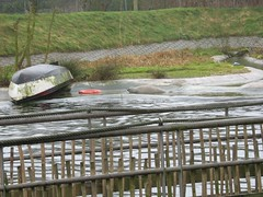 2006_0221_132411AA (Petra65) Tags: nederland rhenen ouwehands dierenpark