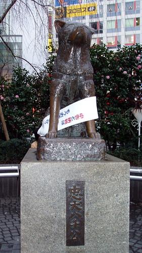 ハチ公(渋谷駅) │ 場所 │ 無料写真素材