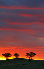 """Believing is Seeing"" (JB Photo) Tags: trees sunset canon landscapes blog highway quality silhouettes skylines sunsets australia victoria aus hume horizons canoneos1d humehighway"