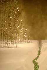persistence of memory (meg82skylark) Tags: minneapolis surreal gone now marshallfields flowershow gardenscape