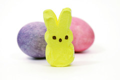 Marshmellow Easter Bunny with Easter Eggs (Mormegil) Tags: pink blue red white rabbit bunny bird chicken yellow start easter purple christ candy religion egg cyan shell calcium sugar christian 5d colored peep marsh fowl marshmellow oval easterbunny hunt mellow embryo eggshell lent easteregg
