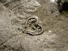 Mon amour, mon... (Magali Deval) Tags: 15fav france beach interestingness sand heart breizh worm anais interestingness394 interestingness129 i500 penarbed monamourmoncoeur twtmeblogged explore06apr2006