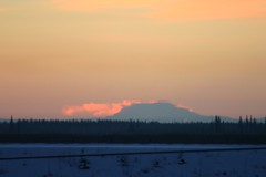 IMG_4312.JPG (jraiii) Tags: nature alaska deltajunction northpole
