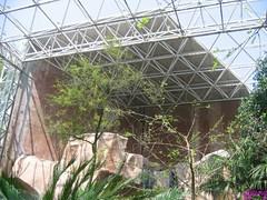 IMG_0017 (Havi Photo) Tags: zoo zoo shanghai  shz