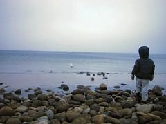 Sten i vand5 (lillehanne) Tags: sten vinterferie lillehanne