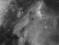 IC5070 (-mrh) Tags: nebula astrophotography cygnus halpha ic5070 st8xme tv85 Astrometrydotnet:status=solved Astrometrydotnet:version=11264 Astrometrydotnet:id=alpha20090584518592