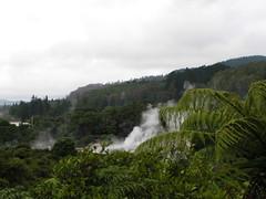1458-whakarewarewa geysers (shimmertje) Tags: new zealand 204
