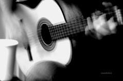 Retrato em branco e preto (Ísis Martins) Tags: violao bossa tomjobim chicobuarque 1968 noitedenatal weihnachtsfest guitarre