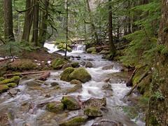 View Deception Creek Overflow on Flickr