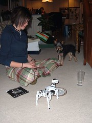 12/25/05 - My Parents' House: Megan, Mom, and Lottie (mavra_chang) Tags: christmas family dogs robots chihuahuas christmas2005 maltese yorkshireterriers lottie christmasday christmasday2005 robotdogs robodogs morkies