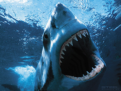Modified Great White Shark