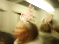 lift bunny (Sprake) Tags: party bunny lift elevator sing playboy newyears thebiggestgroup sprake ktornbjerg