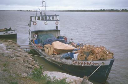 The Guarani