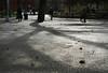 washington square -- and my 2000th post to flickr (lawatt) Tags: washingtonsquare park pavement shadow nyc 10up3
