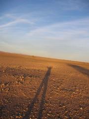 Long legs at sunset (andywalker1) Tags: travel sahara shadows desert dusk bikes morocco biking bmw dakar gs andrewwalker motorcycling voyages motorbiking westernsahara andywalker desertbiking bmwgs650 bmwdakar gs650 stevesenior