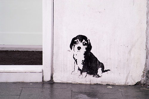 puppy graffitihttp://www.flickr.com/photos/44124436774@N01/82179210