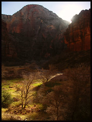 01-04-06 Zion Sunrise-1 - by Picture_taking_fool