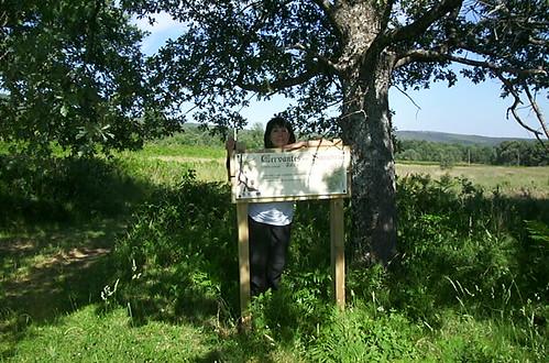 en el prado concejil del pueblo Cervantes
