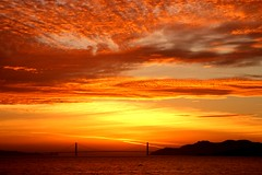 Golden Gate Gold Wow! 29,000 Views! (CoastRanger) Tags: ocean sf sanfrancisco california coastranger ca bridge pink sunset red sea sky favorite orange sun color reflection beach nature topf25 birds silhouette rose yellow skyline clouds america reflections gold evening bay interestingness twilight san francisco searchthebest top20sunrisesunset dusk silhouettes bestviewedlarge calif goldengatebridge goldengate bayarea headlands albany sanfranciscobay eastbay sfbayarea bluehour top20hallfame oceanview shining dusky marinheadlands sfbay shiningsea albanycalifornia albanybulb alamedacounty seas nightfall favorited goldengatefields ggb flickrfavorite albanyca eveningfall favoritedbyflickrographers sfchronicle96hrs abigfave duskingness bestsun world100f 100commentgroup