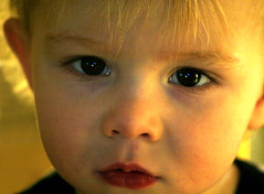 Gray Seriously Close (Ana June) Tags: portrait baby children kid toddler child play tc28closeup