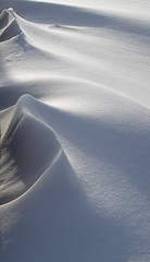 Nightswept (Lalallallala) Tags: winter snow wind dune shape 10faves top20wintertime