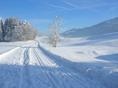 Snow Track