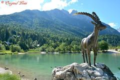 DSC_7201 (Original Loisi) Tags: panorama lake mountains alps nature landscape see view natur berge slovenia slovenija slowenien alpen gebirge steinbock kranjskagora julischealpen karawanken republikaslovenija kronau