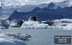 _D2C1359 Jkullsarlon - Hajzs a gleccser lagnban (Nmeth Viktor) Tags: lake viktor iceland glacier jkulsarlon nmeth vilgutaz drnvq