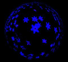 Z0704264621 (nfoto2002) Tags: norway fisheye abstrakt bl hvitveis bltime blomstereng 10op