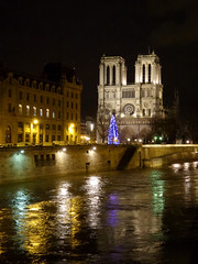 Cathdrale Notre Dame (Toni Kaarttinen) Tags: paris france reflection tower church seine night lights evening frankreich cathedral frana notredame frankrijk prizs francia iledefrance parijs parisian pars  parigi frankrike  pary   francja ranska pariisi  franciaorszg  francio parizo  frana