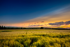 Cool & warm........... (Eric Goncalves) Tags: blue sunset summer sky color beautiful clouds landscape golden dusk vibrant peaceful gloucestershire serenity fields weat xt1 fujifilmxt1