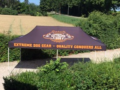 Quick Folding Tent 3x6 -full color promotietent